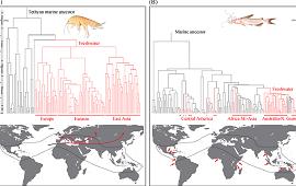 Biological Reviews:古地中海变迁重塑水生动物多样性分布格局