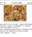 云南日报:中缅联合科考发现跳钩虾两个新种