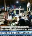 中央电视台:[朝闻天下]中缅第八次联合科考顺利完成