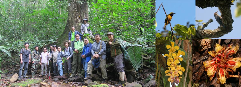 版纳植物园团队顺利完成老挝北部三省野外科考