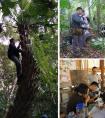 版纳植物园顺利完成中老跨边界第二次生物多样性联合科考