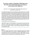 Taxonomic studies of Glochidion (Phyllanthaceae) from the Indo-China Peninsula (I): G. shanense, a new species from Myanmar