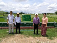 CIB went to Myanmar to implement the experiment of hybrid rice