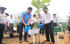China-Myanmar friendship forest project completed