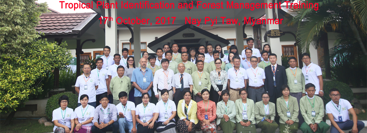 Tropical Plant Identification and Forest Management Training opened in Myanmar