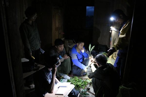 夜间整理标本材料.JPG