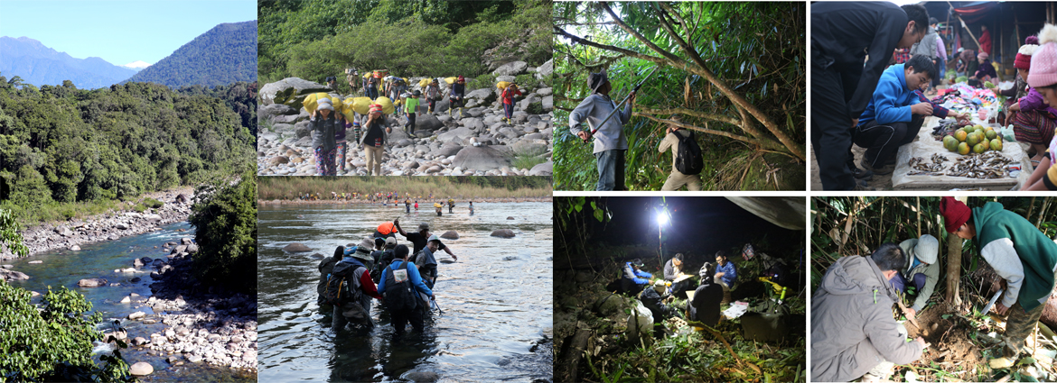 6th China–Myanmar joint field expeditions completed